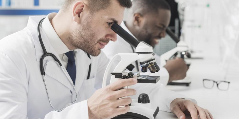 Master professionnel Ingénierie de la Santé parcours Génie physiologique, biotechnologique et informatique